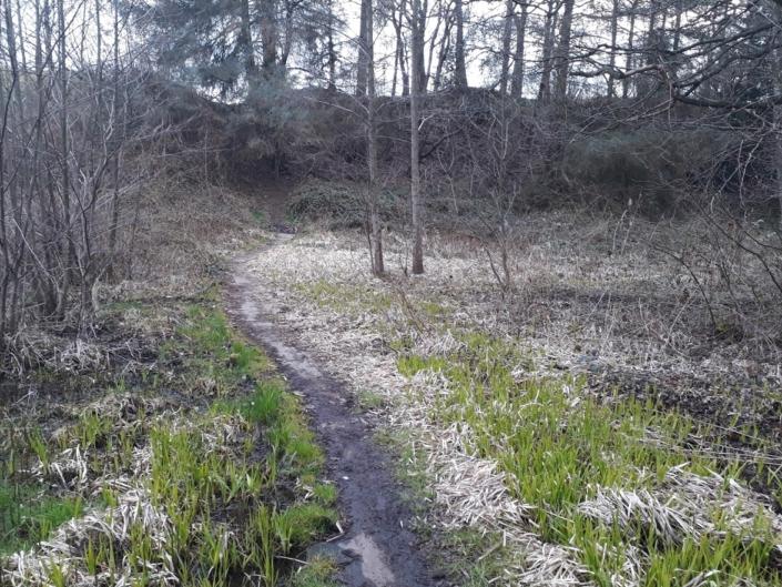 Rands fjord vådområde