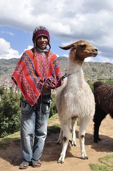 indianer med lama